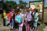 13.4.2016 Excursion for children in Nature reservation Devínska Kobyla